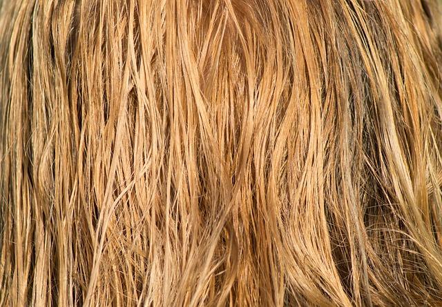 Ápolt, egészséges haj